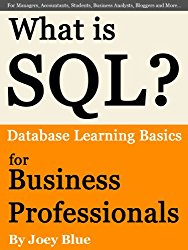 What is SQL? Database Learning Basics for Business Professionals, Managers, Accountants, Students, Business Analysts, Bloggers and More…